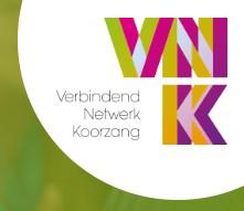 2019 VNK logo